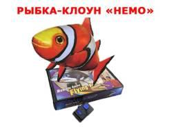 Летающие рыбы.