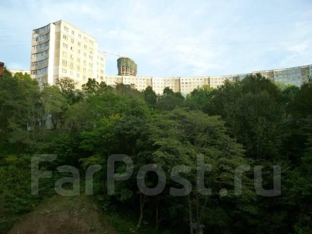 1-комнатная, улица Луговая 78. Баляева, частное лицо, 38 кв.м. Вид из окна днём