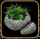 Растения искусственные.
