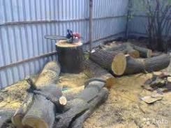 Пилю деревья, спилю, подравняю, санитарная обрезка веток.