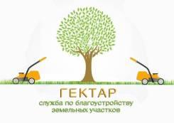 Устройство газона под ключ Скидка до конца мая 15% Озеленение
