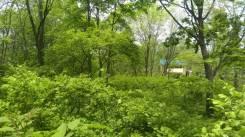 Земельный участок недалеко от Мерседес центра в пос. Трудовое. 2 500кв.м., аренда