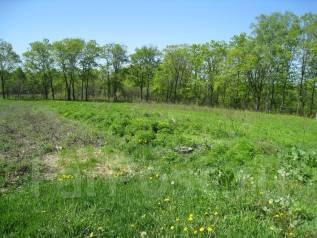 Продается земельный участок. 3 061 кв.м., собственность, электричество, от агентства недвижимости (посредник). Фото участка