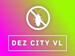 Уничтожение насекомых. Скидки до 50 %. Успей записаться!. Акция длится до 31 августа