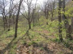 Продам земельный участок в п. Андреевка Хасанского района. 10 000 кв.м., аренда, от частного лица (собственник)