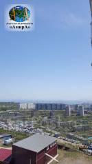 1-комнатная, улица Сабанеева 16в. Баляева, проверенное агентство, 36 кв.м. Вид из окна днём