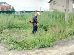 Услуги покоса травы.