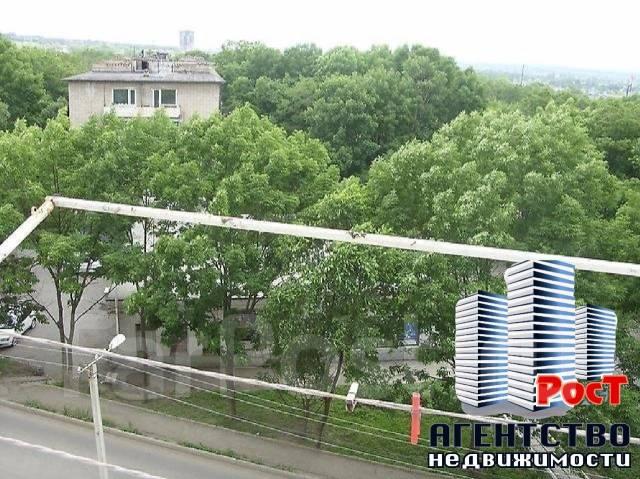 Гостинка, улица Фрунзе 54. Комсомольская, агентство, 17 кв.м. Вид из окна днём