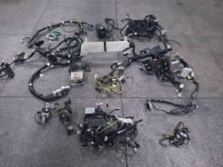 Проводка двс. Subaru Legacy, BEE, BE5, BH9, BE9, BH5 Subaru Forester, SF5, SF9 Subaru Impreza, GC8, GC6, GF8, GC4, GF6, GC2, GF4, GC1, GDA Двигатель E...