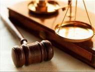 Юридическая помощь, помощь в госзакупках