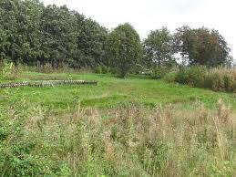 Продам земельный участок. 1 250 кв.м., собственность, электричество, от частного лица (собственник)
