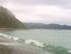 Продам пляж в Преображении. 25 000 кв.м., аренда, электричество, вода, от частного лица (собственник)