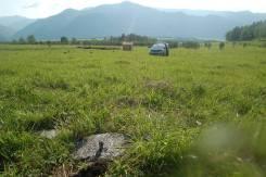 Продаётся участок 11 сот. ИЖС в с. Элекмонар республики Алтай. 1 100кв.м., собственность, электричество, вода