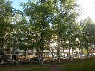 2-комнатная, улица Михайловская (пос. Заводской) 8. Заводской, агентство, 46 кв.м. Вид из окна днём