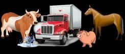 Перевозка животных ( коров , коней, свиней и т . д. ) .