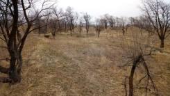 Продам земельный участок 19 сот, с. Воздвиженка, ул. Октябрьская 95-а. 1 913 кв.м., собственность, электричество, от агентства недвижимости (посредни...