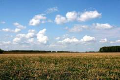"""Продам земельный участок на """"Усадьбе"""". 1 486 кв.м., собственность, электричество, вода, от частного лица (собственник). Фото участка"""