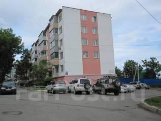 3-комнатная, улица Тухачевского 28. БАМ, агентство, 62 кв.м. Дом снаружи
