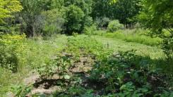 Хороший земельный участок для отдыха и посадок. 600кв.м., собственность. Фото участка