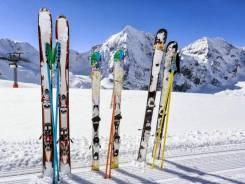 Горные лыжи. Можно без палок