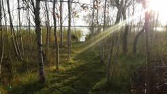 Дача на берегу озера. От частного лица (собственник)