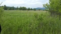 Продам земельный участок в с. Таежка. 1 784 кв.м., собственность, от агентства недвижимости (посредник). Фото участка