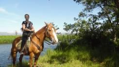 Конные прогулки по берегу реки со скидкой в г. Артем