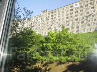 Гостинка, улица Сельская 12. Баляева, агентство, 18 кв.м. Вид из окна днём