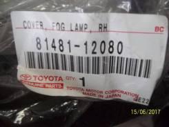 Лампа подсветки приборной панели. Toyota Corolla, CE140, ZRE142, ZRE151, ZRE152, NDE150, ZZE150, ZZE141, ZZE142, ADE150, NZE141 Двигатели: 1ZRFE, 2ZRF...