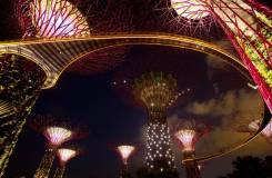 Япония. Сингапур. Экскурсионный тур. Невероятный микс