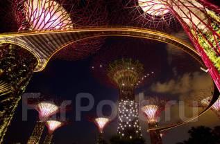 Малайзия. Сингапур. Экскурсионный тур. Невероятный микс