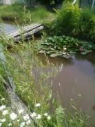 Продам участок, село Баневурово. 1 500 кв.м., собственность, электричество, вода, от частного лица (собственник). Фото участка