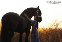 """Конные прогулки, обучение, фото сессия, в КК """"ВладКонТур"""" на Щитовой!"""