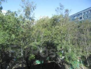 3-комнатная, проспект Красного Знамени 9. Первая речка, агентство, 62 кв.м. Вид из окна днём