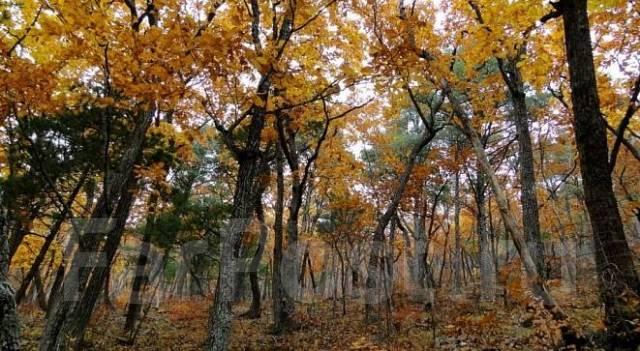Земельный участок в экологически чистом и живописном районе края ИЖС. 1 500кв.м., собственность, от частного лица (собственник)