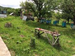 Пчелохозяйство продам