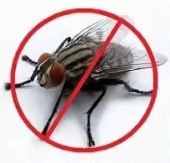 Средства от мух и мошек.