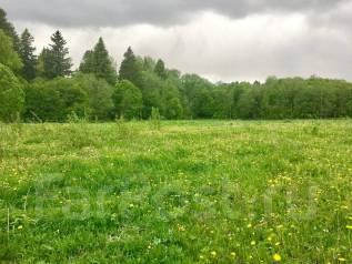 Срочно продаю земельный участок. 1 600 кв.м., собственность, электричество, от частного лица (собственник)