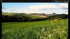 Куплю земельный участок(дачу) землю на пив заводе. срочно. От частного лица (собственник)
