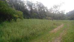 Продам земельный участок в Фокино район 2-я Рабочая (Шанхай). 1 965 кв.м., аренда, от частного лица (собственник). Фото участка