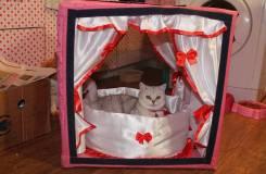 Изготовление выставочных палаток для кошек и собачек. Под заказ