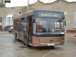 МАЗ 256. Автобус, 2 000 куб. см., 50 мест