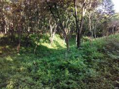 Продам земельный участок в Простоквашино. 1 785 кв.м., собственность, от агентства недвижимости (посредник). Фото участка