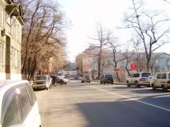 300 метров торгово-офисного помещения в районе ул. Пушкинской. Улица Шкипера Гека 15/1, р-н Центр, 300 кв.м.