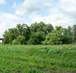 Продам земельный участок в центре села Новосысоевка. 1 600 кв.м., собственность, электричество, вода, от частного лица (собственник). Фото участка