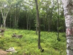 Продаётся земельный участок. 2 000 кв.м., аренда, от частного лица (собственник). Фото участка