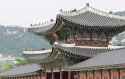 Работа в Южной Корее. Билеты, гарантии. Рассрочка на поездку