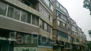2-комнатная, улица Кирова 142. Бабушкина, агентство, 52 кв.м. Дом снаружи