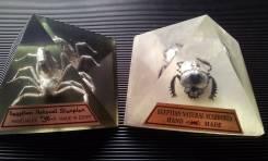Египет. Настоящий скорпион и священный жук скарабей в пирамидках из об