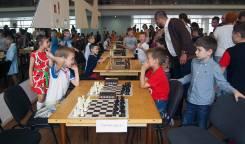 Мастер-класс по шахматам для начинающих ребят.